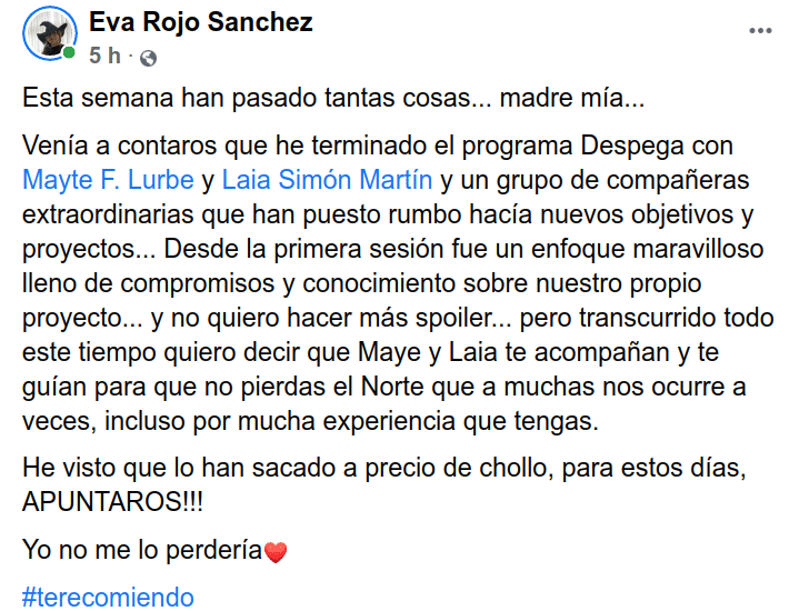 EvaRojo_Despega_grupal