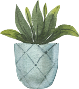 potted_0010_11